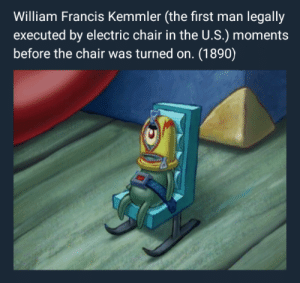 Memes, History, and Chair: William Francis Kemmler (the first man legally  executed by electric chair in the U.S.) mome  before the chair was turned on. (1890) Y'all still like history memes?