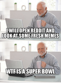 America, Fresh, and Memes: WILLOPEN REDDITAND  LOOK AT SOME FRESH MEMES  WTFISASUPER BOWL Everyone outside of America