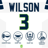Memes, Seahawks, and 🤖: WILSON  RATING  14  COMPLETIONS  248  PASS YDS  3  PASS TDS  158.3  PASS RTG  (PERFECT)  WK  8 A PERFECT day for @DangeRussWilson! #HaveADay #SEAvsDET  #Seahawks https://t.co/6q5Up5N4jk