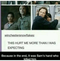 YOU STOP THAT RIGHT NOW: Winchester snowflakes:  THIS HURT ME MORE THAN I WAS  EXPECTING  Because in the end, it was Sam's hand who  killed him YOU STOP THAT RIGHT NOW