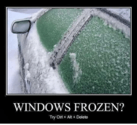 Frozen, Windows, and Alt: WINDOWS FROZEN?  Try Ctrl Alt +Delete