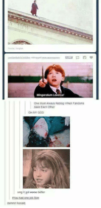 Oh no! -Bad Wolf: Wingardium Leviosa!  One Must Ahways Reblog When Fandoms  Save Each Other  OH MY GOD  omg it got morse better  dammit Ronald. Oh no! -Bad Wolf