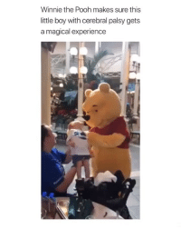 Winnie the Pooh, Girl Memes, and Experience: Winnie the Pooh makes sure this  little boy with cerebral palsy gets  a magical experience Aw