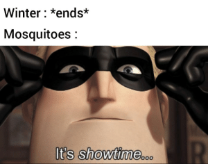 Flamethrower is the key: Winter: *ends*  Mosquitoes:  t's Showtime Flamethrower is the key