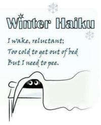 reluctance: Winter Haiku  Iwake, reluctant;  Too cold to get out of bed  Butr need to pee.