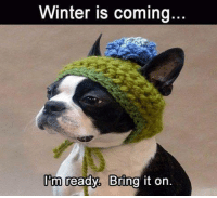 bring it on: Winter is coming  Am ready. Bring it on