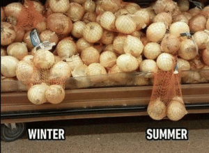 Winter, Summer, and This: WINTER  SUMMER Only Guys understand this
