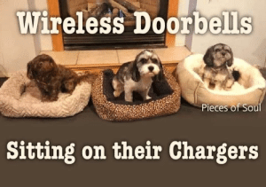 Rings in three tones. Loud, repeat, and howl.: Wireless Doorbells  Pieces of Soul  Sitting on their Chargers Rings in three tones. Loud, repeat, and howl.