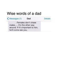 Memes, Chase, and 🤖: Wise words of a dad  K Messages (1)  Dad  Females don't chase  males..... It's the other way  around. If it's important to him,  he'll come see you  Details ☺️☺️