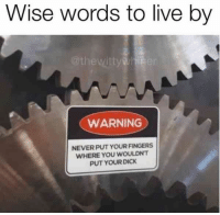 Funny, Lol, and Meme: Wise words to live by  @thewitty ner  WARNING  NEVER PUT YOUR FINGERS  WHERE YOU WOULDNT  PUT YOURDICK wise words to live by indeed | TrendUso #wise #WiseWords #wisen #true #truth #lol #funny #quotes #quotestoliveby #quotesoftheday #meme #memes #memesdaily
