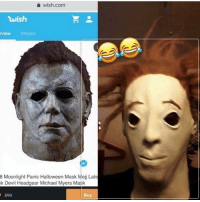 Explain this 💀💀💀💀: wish.com  wish  view Related  8 Moonlight Panic Halloween Mask Mej Late  k Devil Headgear Michael Myers Mask  $99  Buy Explain this 💀💀💀💀