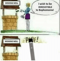Dank Memes, Well, and Wish: WISHING WELL  I wish to be  IRRESISTIBLE  to Sophomores!  WISHING WELL  51