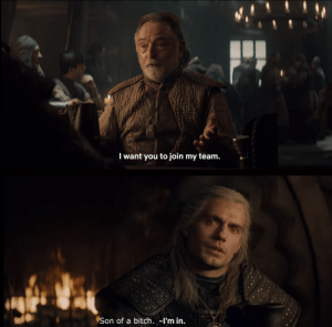 Witcher memes for everyone! I have both enjoyed and stolen every single one of these.: Witcher memes for everyone! I have both enjoyed and stolen every single one of these.