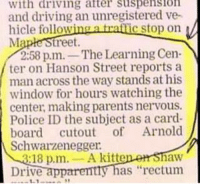 """App, Hanson, and Ratt: with driving alter Suspension  and driving an unregistered ve  hicle follow  a ratt  c stop on  Ma  treet.  2:58 p.m.  The Learning Cen  ter on Hanson Street reports a  man across the way stands at his  window for hours watching the  center, making parents nervous.  Police subject as board cutout of Arnold  Schwarzenegger.  18 p,m  A kitt  haw  y has """"rectum  Drive  app  1-1 Leave them alone Arnie!"""