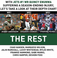 The Jets could use some help at WR...: WITH JETS #1 WR QUINCY ENUNWA  SUFFERING A SEASON-ENDING INJURY,  LET'S TAKE A LOOK AT THEIR DEPTH CHART  WR2  WR1  WR3  17  ROBBY ANDERSON  ARDARIUS STEWART  CHARONE PEAKE  THE REST  CHAD HANSEN, MARQUESS WILSON,  JALIN MARSHALL, LUCKY WHITEHEAD, MYLES WHITE,  FRANKIE HAMMOND, GABE MARKS,  CHRIS HARPER, DESHON FOXX The Jets could use some help at WR...