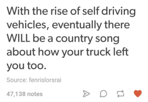 Self-driving country music: With the rise of self driving  vehicles, eventually there  WILL be a country song  about how your truck left  you too.  Source: fenrislorsrai  47,138 notes Self-driving country music