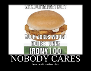 wholesome 100: WITHOUT IMPACT FONT  YOUR JOKES WOULD  NOT BE FUNNY  IRONY 100  NOBODY CARES  i use reddit mother bitch wholesome 100