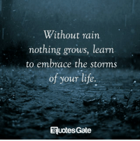 Rain: Without rain  nothing grows, learn  to embrace the storms  of your life  uotes Gate
