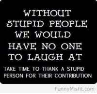 Stupid People Meme: WITHOUT  STUPID PEOPLE.  WE WOULD  HAVE NO ONE  TO LAUGH AT  TAKE TIME TO THANK A STUPID  PERSON FOR THEIR CONTRIBUTION  Funny Misfit.com