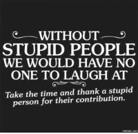 Tag them to show your appreciation.: WITHOUT  STUPID PEOPLE  WE WOULD HAVE NO  ONE TO LAUGH AT  Take the time and thank a stupid  person for their contribution.  memes. COM Tag them to show your appreciation.