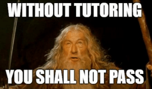 The Tutor Tutorial: 5 Expert Tips on How to Tutor French | FluentU ...: WITHOUT TUTORING  YOU SHALL NOT PASS The Tutor Tutorial: 5 Expert Tips on How to Tutor French | FluentU ...