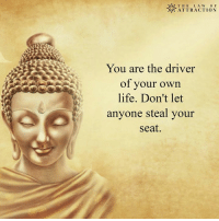 Memes, 🤖, and Law: WIZ THE LA W O F  ATTRACTION  You are the driver  of your own  life. Don't let  anyone steal your  Seat. <3 The Law Of Attraction  .