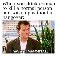 Memes, 🤖, and Immortal: Wnen vou drink enougn  to kill a normal person  and wake up without a  nangover.  @tasteslikesarcasm  I AM AN IMVORTAL Tag an immortal.. @tasteslikesarcasm for more @tasteslikesarcasm @tasteslikesarcasm