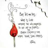 Memes, 🤖, and Sparks: wnHOUT THE WILLINGNESS  A TO GO IN ME  TO  BURN ENTIRELY FOR  WHOM YOUR SOUL CRAVES  a C  Spark Take a risk on love... Some burn up others burn out... Keep the fire burning. 🔥🔥🔥❤ _______________ Rp @a.c.sparks