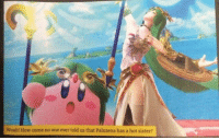 Hot Sister: Woah! How come no one ever told us that Palutena has a hot sister?