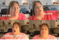 Spider, Did, and  No: woahhh  did u no  ijustsaw a spider <p>1 updot 1 spoder killd</p>