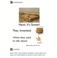 God, Tumblr, and Pink: wodneswynn  Neat, it's Sumer!  They invented:  clay  Which they used  to talk about:  wheat  they had a lot of  tun  nunchuk  god i wish i was writing cuneiform notes about my  grains on clay tablets in ancient sumer right now light pink is such a god tier color