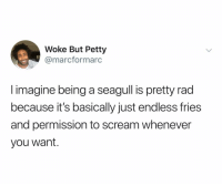 Petty, Scream, and Dank Memes: Woke But Petty  @marcformarc  I imagine being a seagull is pretty rad  because it's basically just endless fries  and permission to scream whenever  you want. (@commentawards)