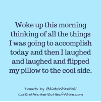 My Pillow: Woke up this morning  thinking of all the things  I was going to accomplish  today and then I laughed  and laughed and flipped  my pillow to the cool side  Tweets by @KateWhineHall  CanlGetAnotherBottleofWhine.com