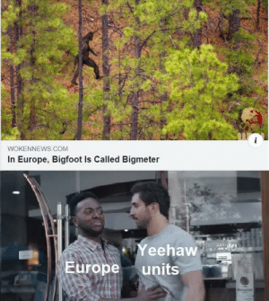 We don't do that here by milk_connoisseur23 MORE MEMES: WOKENNEWS.COM  In Europe, Bigfoot Is Called Bigmeter  Yeehaw  Europe  units We don't do that here by milk_connoisseur23 MORE MEMES
