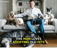 There's no age limit on cuteness: wolfgang2242  THIS MAN  LOVES  ADOPTING  OLD  PETS There's no age limit on cuteness