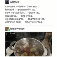 Relatable, Ginger, and Green Tea: wolftyla  stressed.  lemon balm tea  bloated. peppermint tea  slow metabolism  green tea.  nauseous. ginger tea  sleepless nights  chamomile tea.  common cold  elderflower tea.  lalalalyndsey give me all the tea ☕️🐸