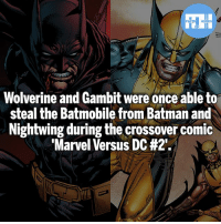 Batman, Memes, and Superman: Wolverine and Gambit were once able to  steal the Batmobile from Batman and  Nightwing during the crossover comic  Marvel Versus DC Batman vs Wolverine, who wins? - My other IG accounts @factsofflash @yourpoketrivia @webslingerfacts ⠀⠀⠀⠀⠀⠀⠀⠀⠀⠀⠀⠀⠀⠀⠀⠀⠀⠀⠀⠀⠀⠀⠀⠀⠀⠀⠀⠀⠀⠀⠀⠀⠀⠀⠀⠀ ⠀⠀--------------------- batmanvssuperman xmen batman superman wonderwoman deadpool spiderman hulk thor ironman marvel greenlantern theflash wolverine daredevil aquaman justiceleague homecoming homecoming wallywest rockeyraccoon redhood avengers groot gambit kylerayner wolverine like4like injustice2