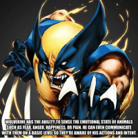 intently: WOLVERINE HAS THE ABILITY TO SENSE THE EMOTIONAL STATE OF ANIMALS  SUCH AS FEAR, ANGER, HAPPINESS, OR PAIN. HE CAN EVEN COMMUNICATE  WITH THEM ON A BASIC LEVEL'SO THEY:RE AWARE OF HIS ACTIONS AND INTENT