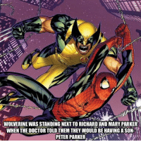 Wolverine: WOLVERINE WAS STANDING NEXT TO RICHARD AND MARY PARKER  WHEN THE DOCTOR TOLD THEM THEY WOULD BE HAVING A SON  PETER PARKER