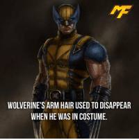 Easter, Facts, and Hype: WOLVERINE'S ARM HAIR USED TO DISAPPEAR  WHEN HE WAS IN COSTUME. |- The strange universe of comics🤔 -| - - - - marvel marveluniverse dccomics marvelcomics dc comics hero superhero villain xmen apocalypse xmenapocalypse geekhype hype doctorstrange spiderman deadpool meme captainamerica ironman teamcap teamstark teamironman civilwar captainamericacivilwar marvelfact marvelfacts fact facts easter