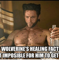 Memes, 🤖, and Wolverines: WOLVERINE'S HEALING FACT  TIMPOSIBLE FOR HIMTOGET