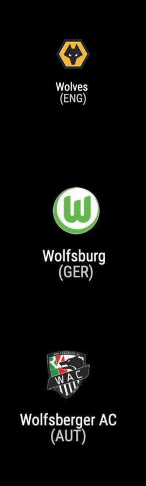 If Wolves was a Pokemon this would have been it's evolution chain https://t.co/ukROszpKah: Wolves  (ENG)   Wolfsburg  (GER)   wOLESS  WAC  Wolfsberger AC  |(AUT) If Wolves was a Pokemon this would have been it's evolution chain https://t.co/ukROszpKah