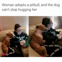 I've managed to only post Dog-Cat memes today so why notttttt carry on ehhhhhhhh | More 👉 @miinute: Woman adopts a pitbull, and the dog  can't stop hugging her I've managed to only post Dog-Cat memes today so why notttttt carry on ehhhhhhhh | More 👉 @miinute