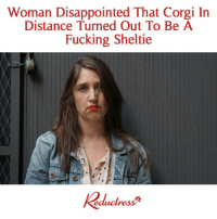 Corgi, Disappointed, and Fucking: Woman Disappointed That Corgi In  Distance Turned Out To Be A  Fucking Sheltie  keductresぶ