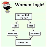 Logic, Memes, and Mean: Women Logic!  Do you think  I'm fat?  No!  You're Lying  You're mean  I Hate You