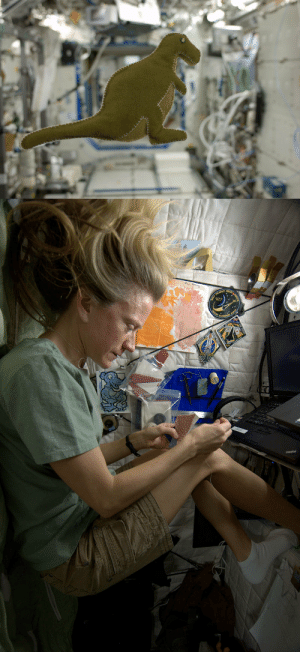 womeninspace: NASA astronaut Karen Nyberg is a self proclaimed crafter. A week ago she made a stuffed dinosaur from scraps on the space station. The little T-rex is made form the lining of Russian food containers and the toy is stuffed with scraps from an old T-shirt. While many toys have flown into space, this is the first produced in space. Photos: Karen Nyberg, via CollectSpace : womeninspace: NASA astronaut Karen Nyberg is a self proclaimed crafter. A week ago she made a stuffed dinosaur from scraps on the space station. The little T-rex is made form the lining of Russian food containers and the toy is stuffed with scraps from an old T-shirt. While many toys have flown into space, this is the first produced in space. Photos: Karen Nyberg, via CollectSpace
