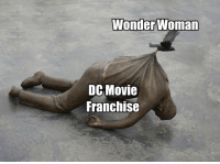 Movie, Wonder Woman, and Wonder: Wonder Woman  DC Movie  Franchise