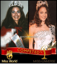 BEAUTY QUEENS of WONDER * In 1972, at the age of 21, LYNDA CARTER competed in the international MISS WORLD beauty pageant, after winning her country's title in the United States. * In 2004, at the age of 19, GAL GADOT competed in the international MISS UNIVERSE beauty pageant, after winning her country's title in Israel. *** @reallyndacarter @gal_gadot mywonderwoman girlpower women femaleempowerment MulherMaravilha MujerMaravilla galgadot unitetheleague princessdiana dianaprince amazons amazonwarrior manofsteel thedarkknight lyndacarter beautypageant missuniverse missworld: WONDERV  COMPETED  Miss World  MISS+ UNIVERSE BEAUTY QUEENS of WONDER * In 1972, at the age of 21, LYNDA CARTER competed in the international MISS WORLD beauty pageant, after winning her country's title in the United States. * In 2004, at the age of 19, GAL GADOT competed in the international MISS UNIVERSE beauty pageant, after winning her country's title in Israel. *** @reallyndacarter @gal_gadot mywonderwoman girlpower women femaleempowerment MulherMaravilha MujerMaravilla galgadot unitetheleague princessdiana dianaprince amazons amazonwarrior manofsteel thedarkknight lyndacarter beautypageant missuniverse missworld
