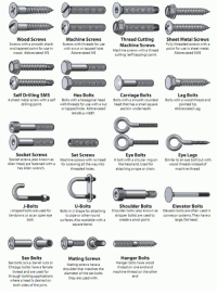 <p>The nuts and bolts of nuts and bolts.</p>: Wood Screws  Screws with a smooth shank  and tapered point for use in  wood. Abbreviated WS  Machine Screws  Screws with threads for use  with a nut or tapped hole.  Abbreviated MS  Thread Cutting  Machine Screws  Machine screws with a thread  cutting (self tapping) point.  Sheet Metal Screws  Fully threaded screws with a  Abbreviated SMS  a thread  point for use in sheet metal.  Self Drilling SMS  A sheet metal screw with a self  drilling point.  Hex Bolts  Bolts with a hexagonal head  with threads for use with a nut  or tapped hole. Abbreviated  HHMB or HXBT  Carriage Bolts  Bolts with a smooth rounded  head that has a small square  section underneath.  Lag Bolts  Bolts with a wood thread and  pointed tip.  Abbreviated Lag.  Socket Screws  Socket screws, also known as  Allen Head, are fastened with a  hex Allen wrench.  Set Screws  Machine screws with no head  for screwing all the way into  threaded holes  Eye Bolts  A bolt with a circular ring on  the head end.Used for  attaching a rope or chain.  Eye Lags  Similar to an eye bolt but with  wood threads instead of  machine thread  J-Bolts  U-Bolts  Shoulder Bolts  Elevator Bolts  shaped bolts are used for Bolts in U shape for attaching Shoulder bolts (also known as Elevator bolts are often used in  stripper bolts) are used to conveyor systems. They have a  to pipe or other round  surfaces.Also available with a  square bend.  tie-downs or as an open eye  bolt  create a pivot point.  large, flat head.  Sex Bolts  Sex bolts (a.k.a. barrel nuts or  Chicago bolts) have a female  thread and are used for  through bolting applications  where a head is desired on  both sides of the joint.  Mating Screws  Mating screws have a  shoulder that matches the  diameter of the sex bolts  they are used with.  Hanger Bolts  Hanger bolts have wood  thread on one end and  machine thread on the other  end <p>The nuts and bolts of nuts and bolts.</p>