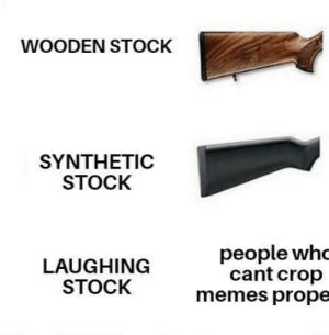 i hate those kind of people: WOODEN STOCK  SYNTHEΤIC  STOCK  people whc  cant crop  memes prope  LAUGHING  STOCK i hate those kind of people